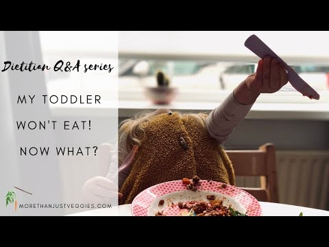 MY TODDLER WON'T EAT ● A dietitian's tips on what you can do about it!
