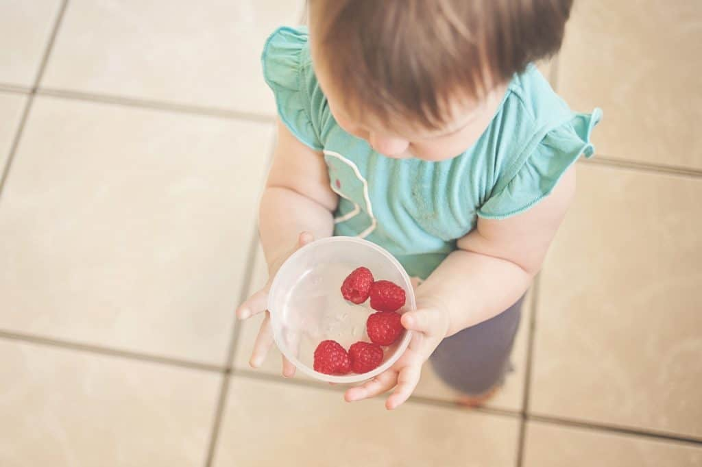 Toddler eating raspberries