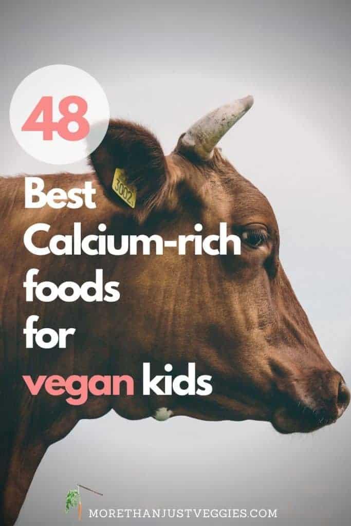 Calcium-rich foods for vegan kids