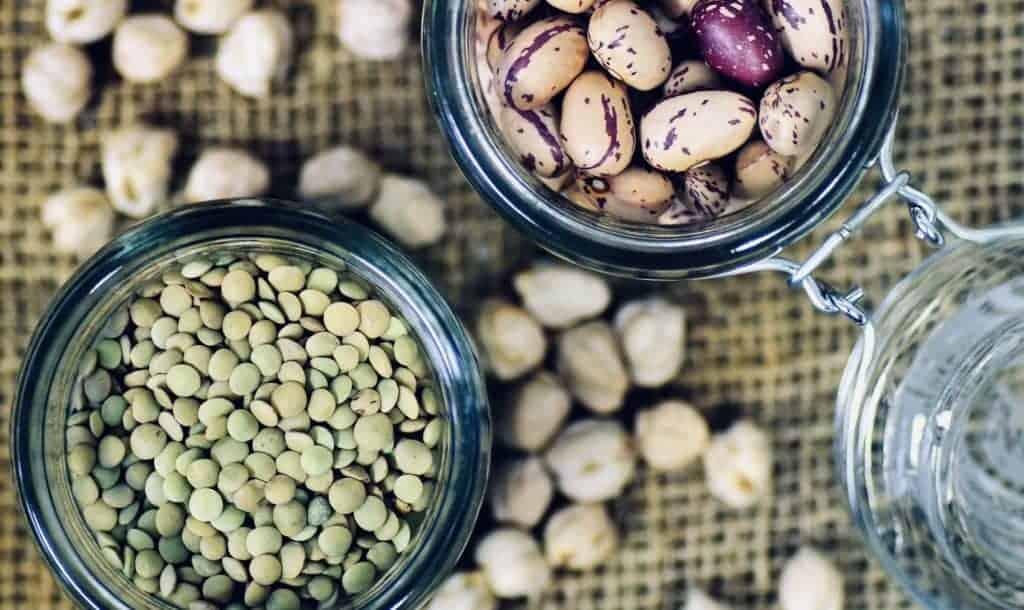 High protein vegan foods